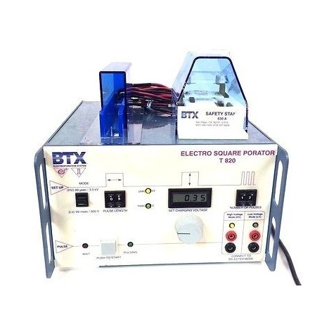 BTX Electrophoresis