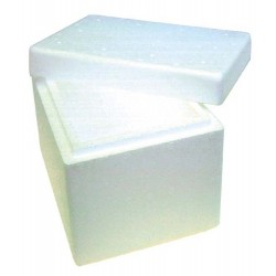 Foam Cooler Boxes with Lid, 2L, 12 x 22 x 15cm