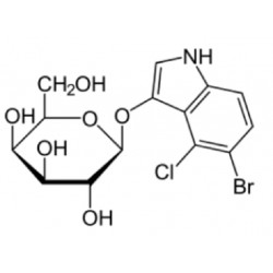 X-Gal (5-Bromo-4-chloro-3-indoyl-b-D-Galactopyranoside)  (0.5grm)