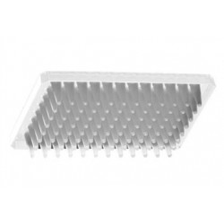 Axygen 96 well PCR plate Half skirt to suit ABI instruments-pkt/50-