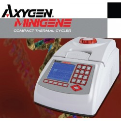 Axygen MiniGene Thermal Cycler