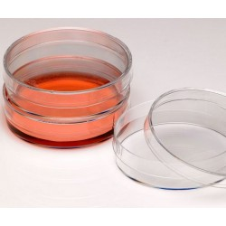Nest Cell Culture Petri Dish, 60mm, polystyrene, sterile, ctn/500