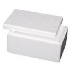 Foamex Foam Cooler Box with Lid, 2L