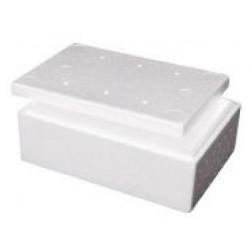 Foamex Foam Cooler Box with Lid, 5L, ctn/20