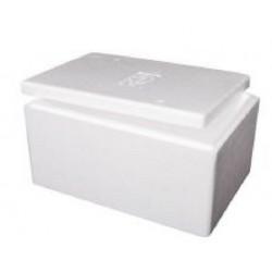 Foamex Foam Cooler Box with Lid, 21L, each