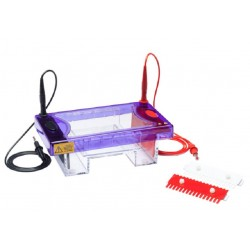 Cleaver Vertical & Horizontal Electrophoresis Systems