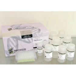 Favorgen 96-well Total RNA Kit  (4 plates)