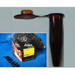 Axygen Amber flip top tubes 1.7ml (Not certified to be autocalvable or boil-proof)- Non-Sterile-pkt/500