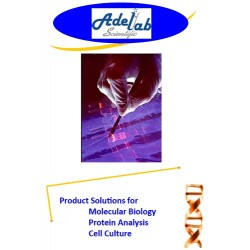 Product Solutions for Molecular Biology Protein Analysis Cell Culture