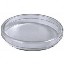 Petri Dish, Glass with Lid, 75mm d x 15mm h-each