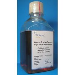 Fisher Biotec-Foetal Bovine Serum-500mL