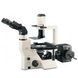 Labomed Inverted TC Model TCM 400 Microscope